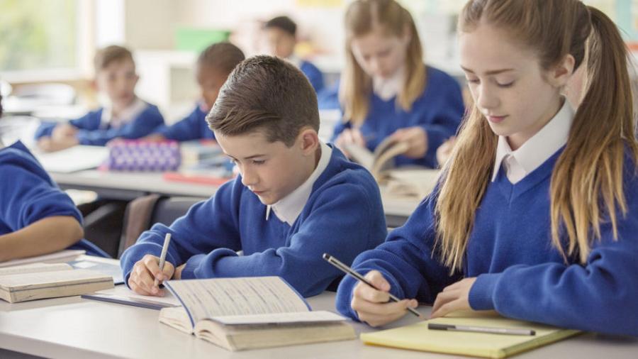 Self-teach Education through Curriculum Content